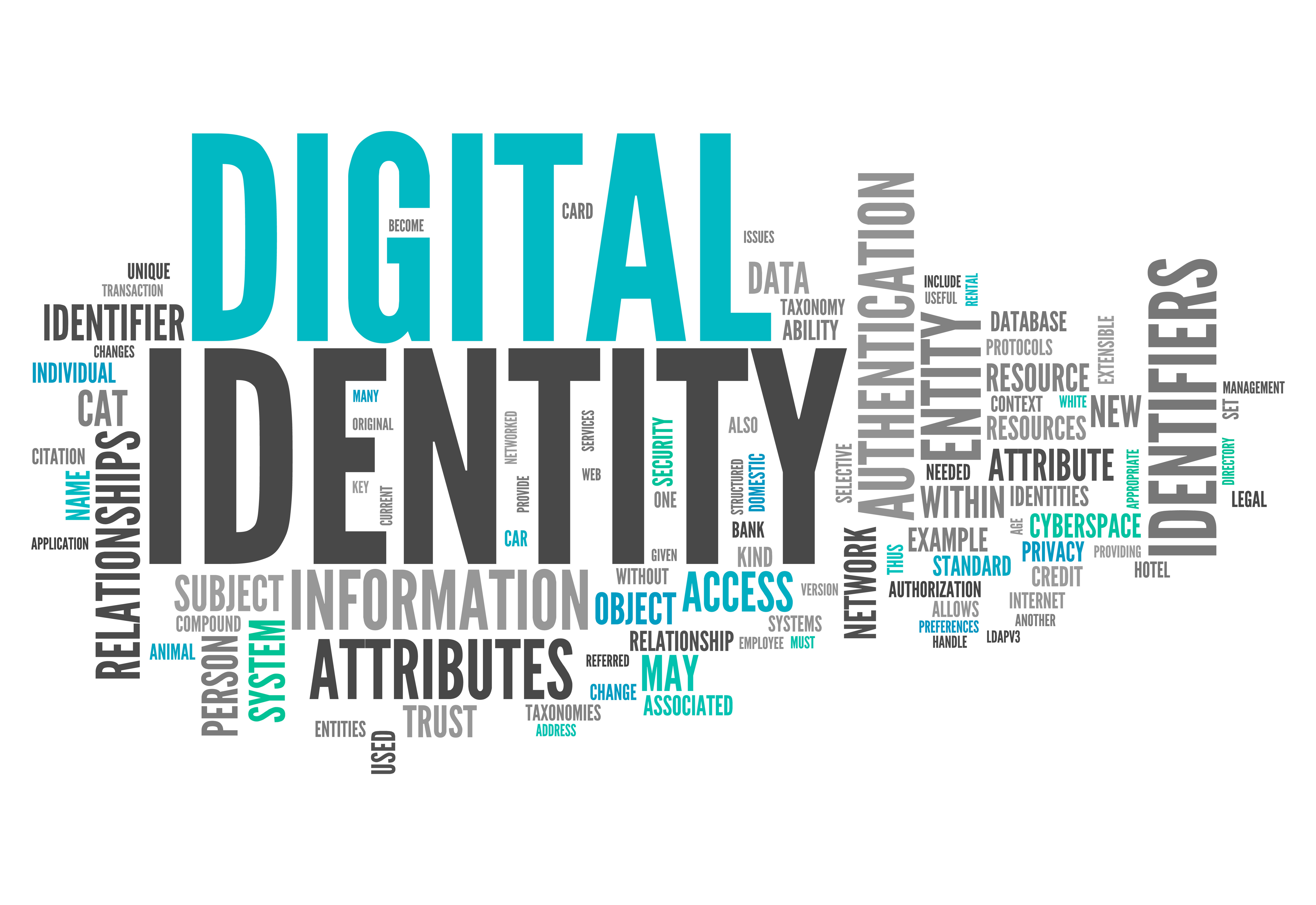 What Is Digital Identity? Building Trust in Our Digital World