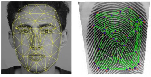 Behavioral Biometrics vs Static Biometrics: Dynamic Fraud Detection Explained