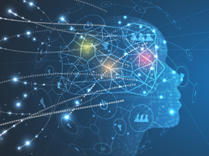 Behavioral Biometrics: A Primer on Dynamic Fraud Detection